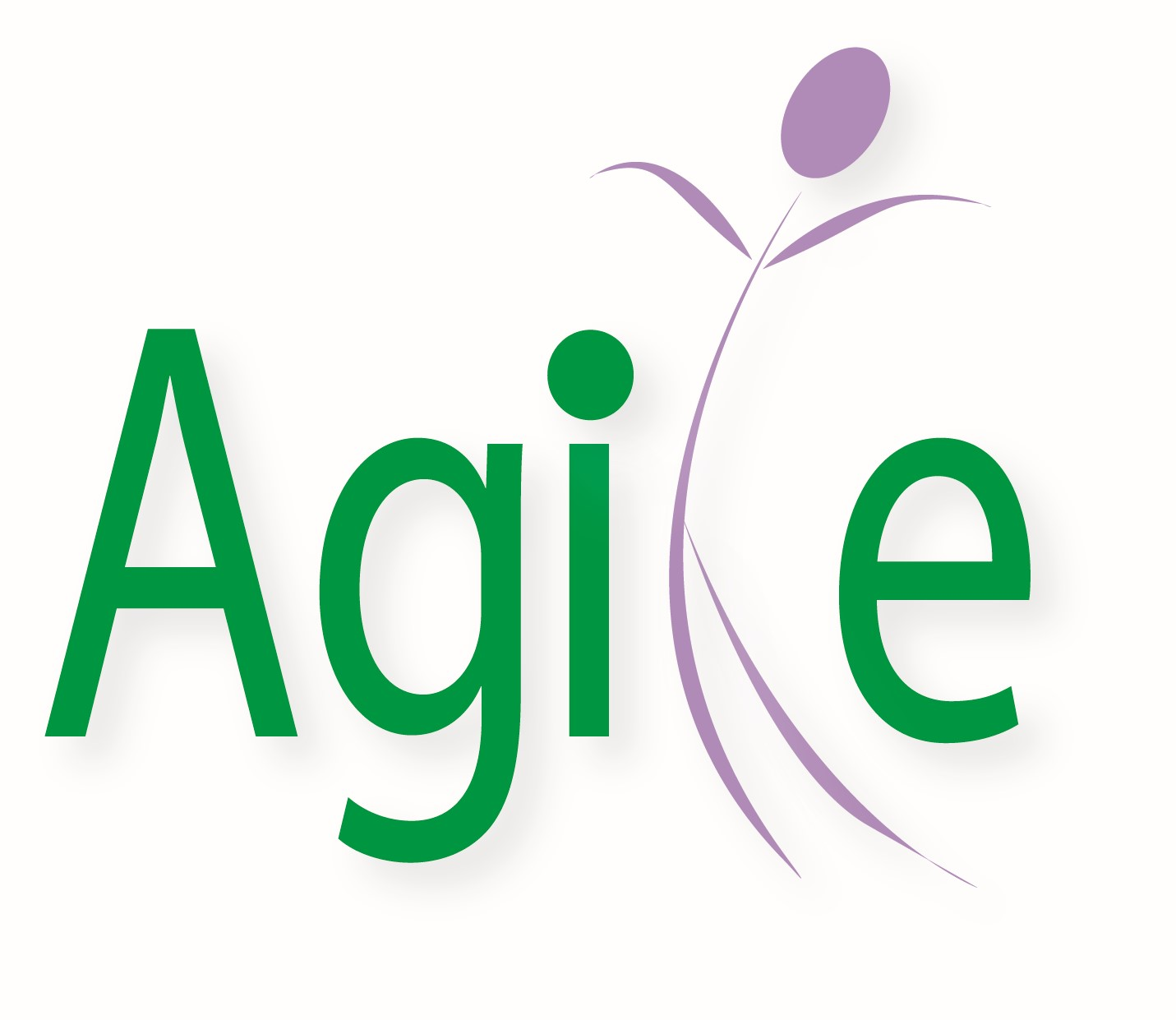 Agile Hr Consulting Ltd